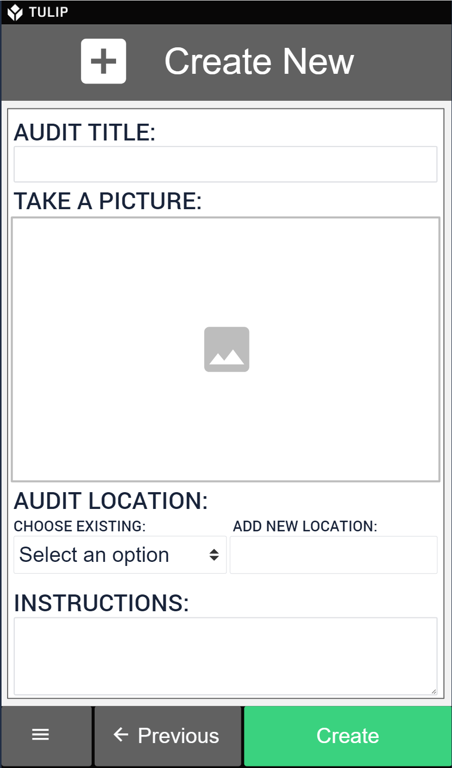 Create mobile audits that match your exact auditing needs