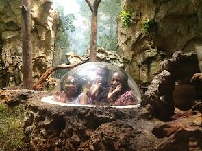 Photo: inside the exhibit!