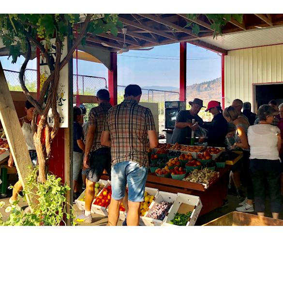 Aujla Farm Market