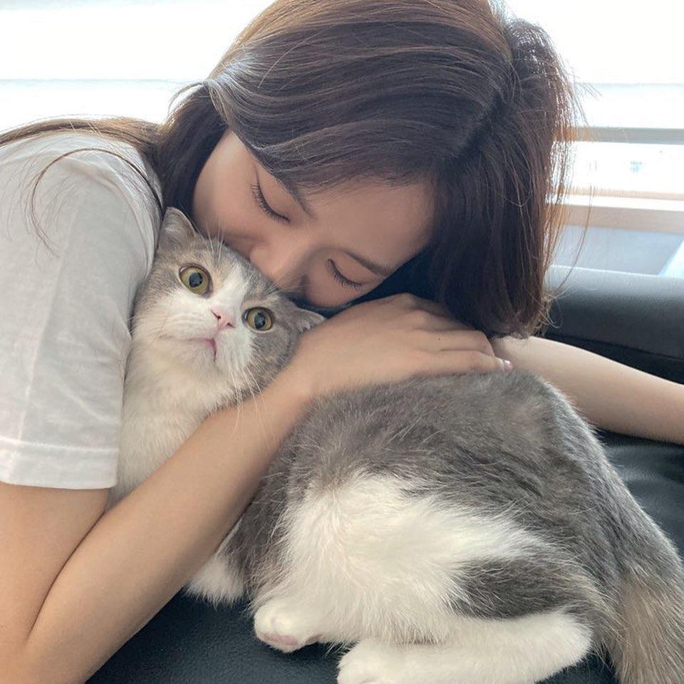 jisoo cat1
