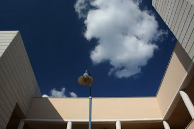 The Blue over me di ginkoz