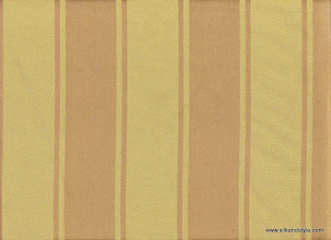 Photo: Lucknow 17 - Valmi Stripes - Color Silver Green