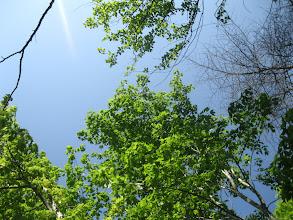 Photo: Beautiful Carolina Sky