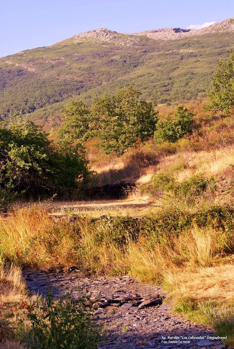 Photo: Camino a la montaña