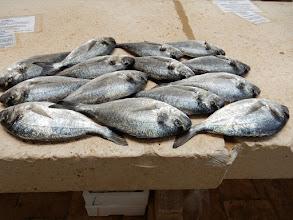 Photo: De vismarkt in Split