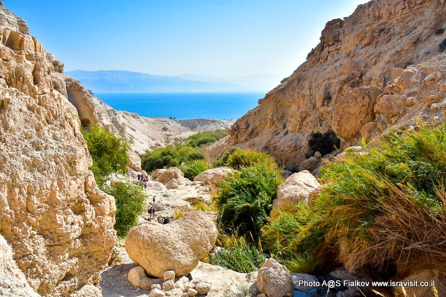Эйн-Геди. Вид на Мертвое море. Экскурсии в Израиле.