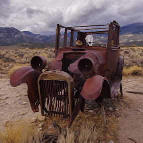 Needs Repair by Ramsey Samara - Transportation Automobiles ( old, rusty, antique, skull, great basin )