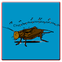 Cricket and Insect Sounds icon