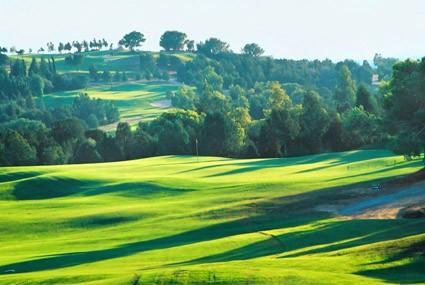Photo Golf Citrus