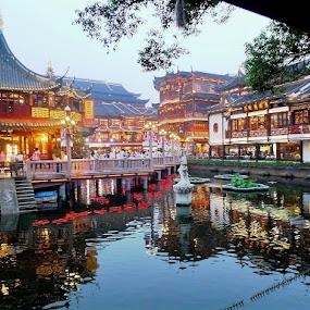 Yu Garden by Svetlana Saenkova - City,  Street & Park  City Parks ( pond, shanghai, garden, evening, landmark,  )