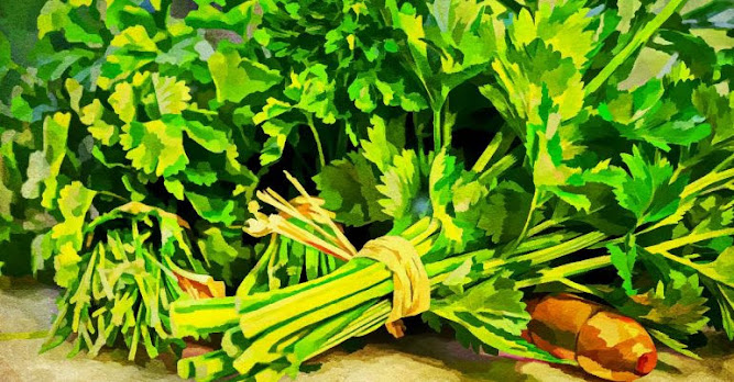 4 Simple Ways To Use Cilantro For Your Skincare Regime