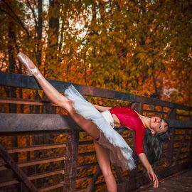 Dancer on the Bridge by Adam Evans - Sports & Fitness Other Sports ( ballet dancer, girl, tutu, autumn, female, woman, fall, stretch, bridge, leaves, ballerina, ballet, dancer,  )