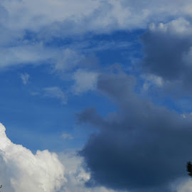 by Denise O'Hern - Landscapes Cloud Formations
