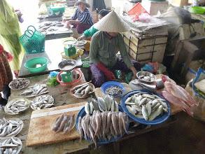 Photo: Fish market