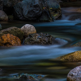 Jordan Creek, Marblemount, WA by Shawn Crowley - Nature Up Close Water