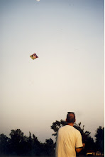 Photo: Enough space for kite Flying in Puszta