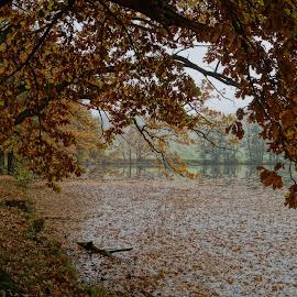 by Olga Havlíčková - Landscapes Weather