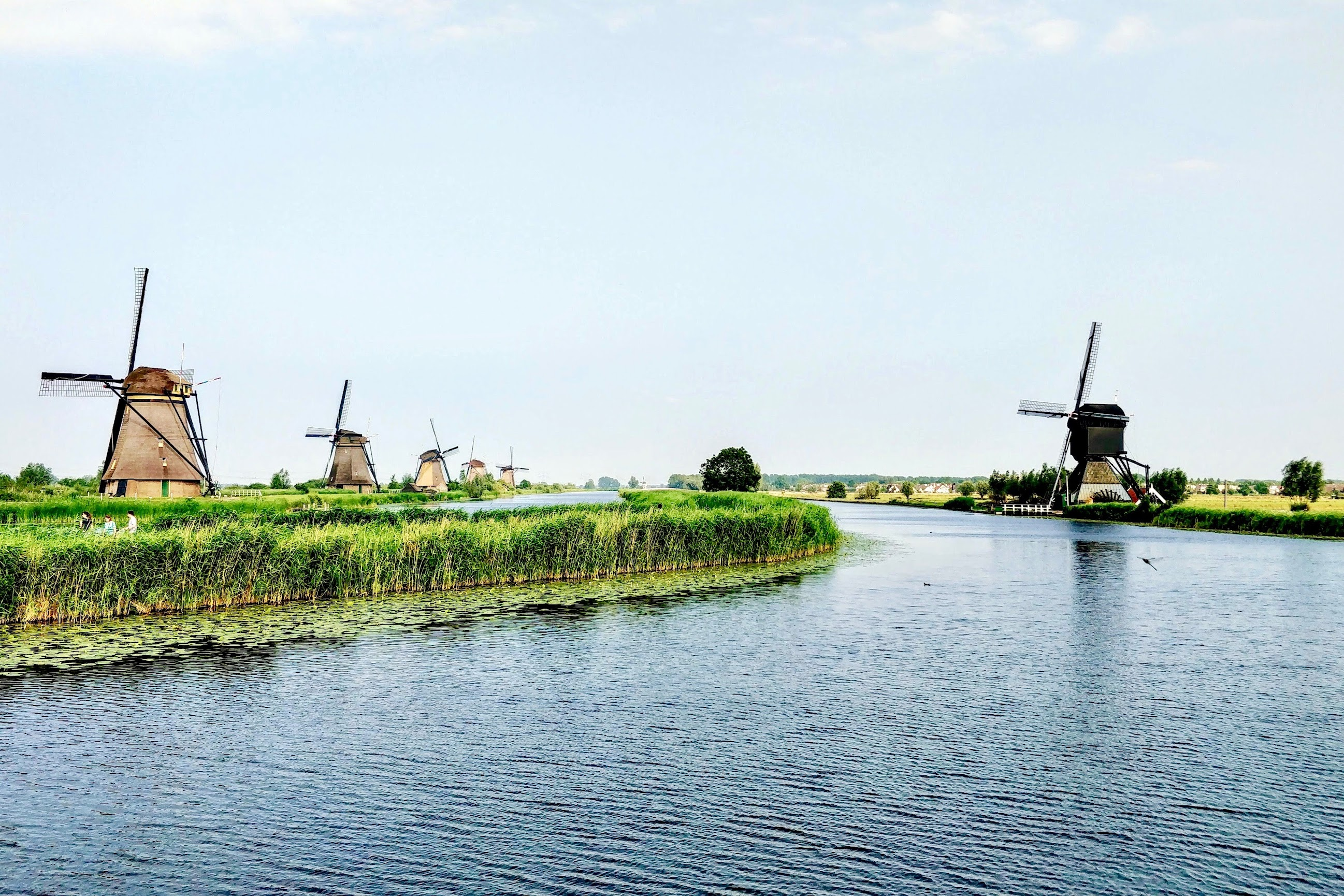 mooiste-wandelgebieden-nederland
