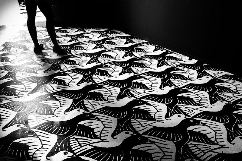 Alla mostra di Esher III di NinoZx21
