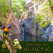 Journey to the Top End (Sounds of Nature in the Australian Bush)