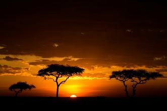 Photo: sunset of africa...