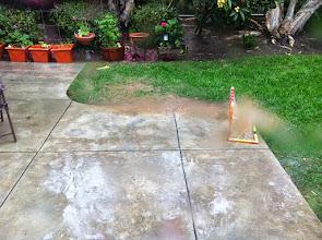 Photo: Rainy Back Yard