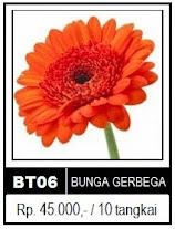 Bunga Gerberga Toko Bunga Jakarta