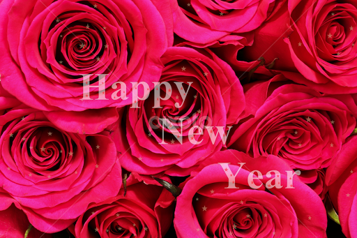 happy new year background with roses by vrinda mahesh flowers flower arangements text
