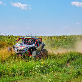 Buggy in action by Roberto Sorin - Sports & Fitness Motorsports ( person, automobile, dune, driving, race, danger, drive, action, dutch, power, dirt, motion, hill, rali, monster, fun, off-road, baja, jump, daf, rally, raly, buggy, auto, view, big, fast, car, crunch, wheel, truck, crush, vehicle, land, way, qat, adventure, dirty, path, motorsport, hard, bulgaria, extreme, editorial, speed, offroad, track, play, sport, atv, front, smash, ruse, up, challenge, red, blue, unkind, off, competition,  )