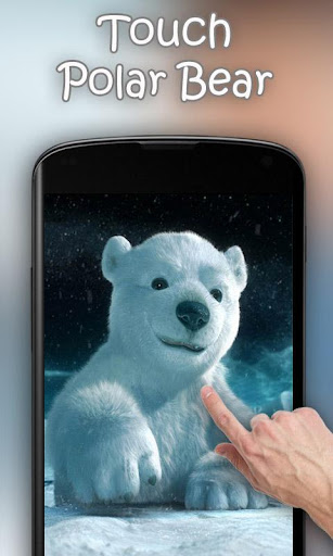 玩免費個人化APP|下載Bears Live Wallpaper app不用錢|硬是要APP