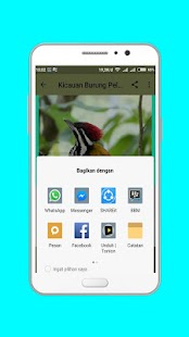 Master Kicau Burung Pelatuk Offline - náhled