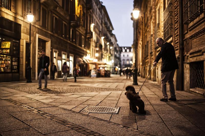 Per le strade di Torino di Jackass1991
