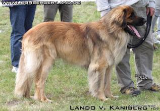 Photo: Lando - 27.6.2009 Tessin