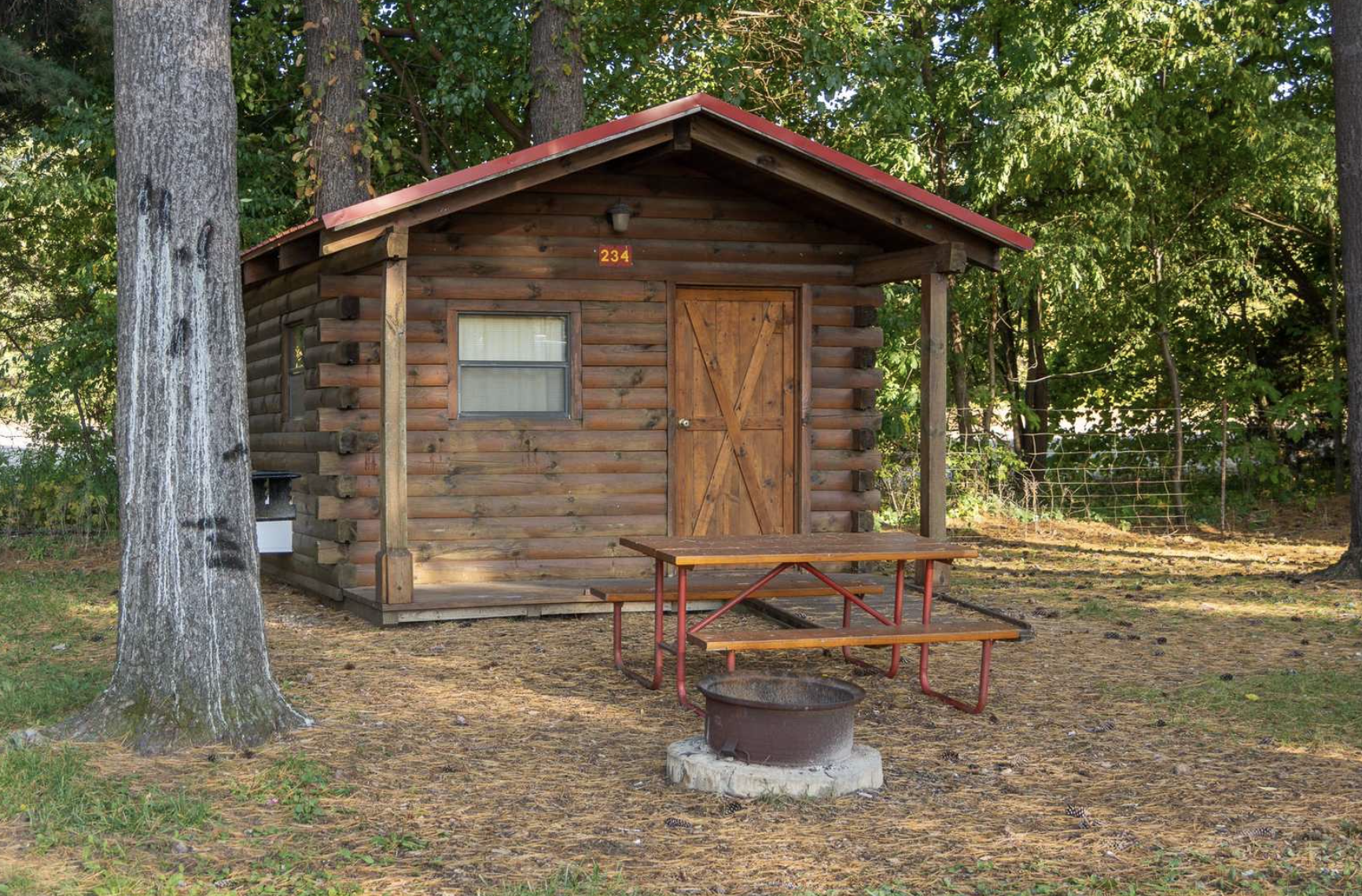 Cabin between trees with picnic table and fireplace