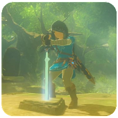 How to Survive Trial of the Sword Zelda BoW