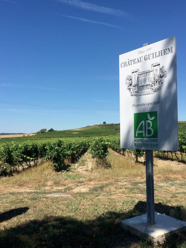 Op bezoek bij Chateau Guilhem - augustus 2016