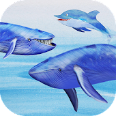 Knowee : Whales and Dolphins