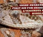 Snake Awareness and Venomous Snake Handling Course : The Venom Pit Snake Park East London
