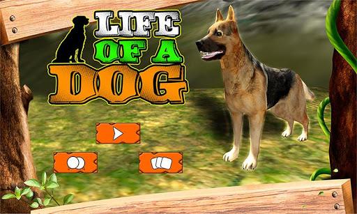 一隻狗的生活