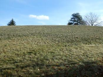terrain à Le Tholy (88)