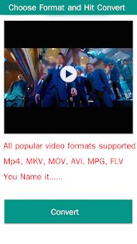 Video Format Converter