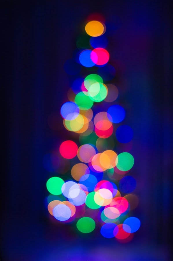 Abstract Christmas tree1 by Mark Luyt - Public Holidays Christmas ( christmas tree, bokeh, abstract, christmas lights, christmas, lights, colours )