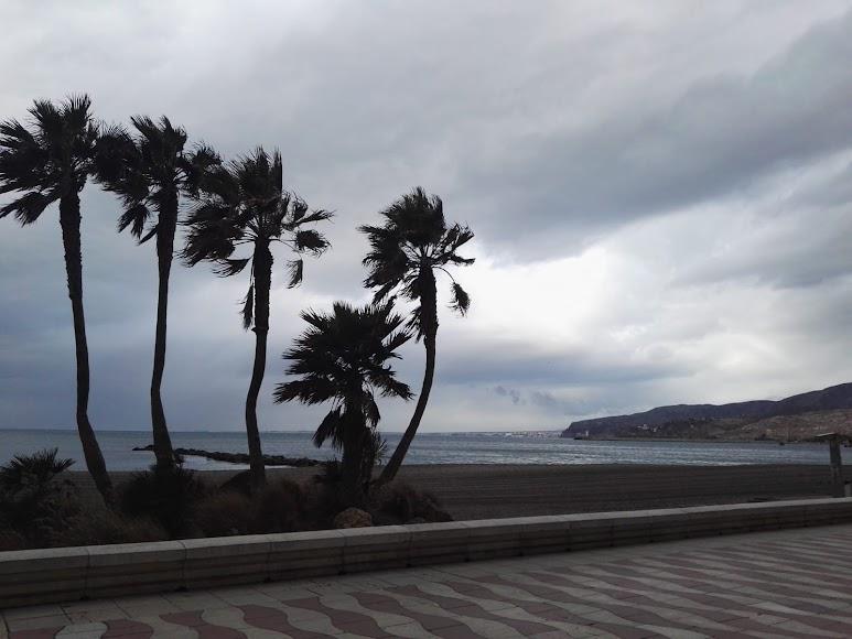 El viento sopla con fuerza en la capital.