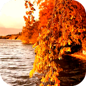 Autumn 3D Video LWP