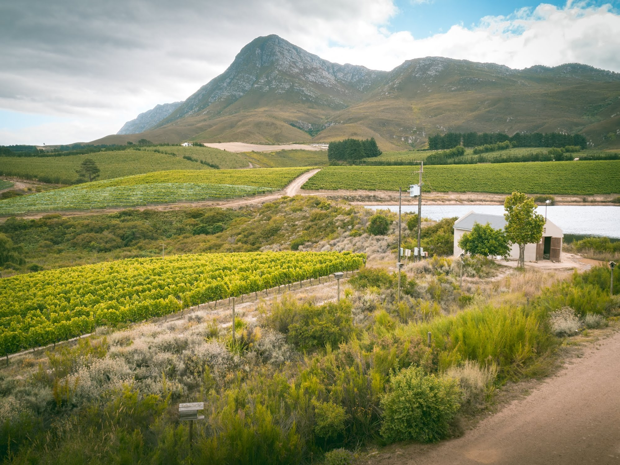 Creation Wines estate, Hermanus