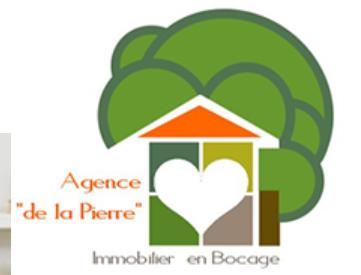 Logo de AGENCE DE LA PIERRE IMMOBILIER