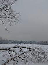 Photo: Поле около Сысоево