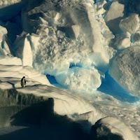 Antartide di
