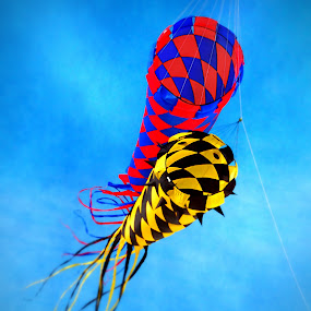 by Robin Amaral - Artistic Objects Other Objects ( skyline, hobby, kite string, yellow, treasure island - florida, beach, family fun, flight, red, blue, festival, kites, fabric, black,  )