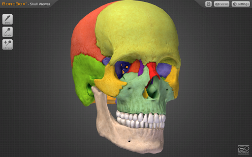 BoneBoxu2122 - Skull Viewer 1.0.0 screenshots 3